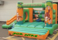 standard Childrens Bouncy Castle with a slide on the side